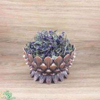 گیاه دارویی گل بنفشه درجه یک و اعلاءعطاری کده